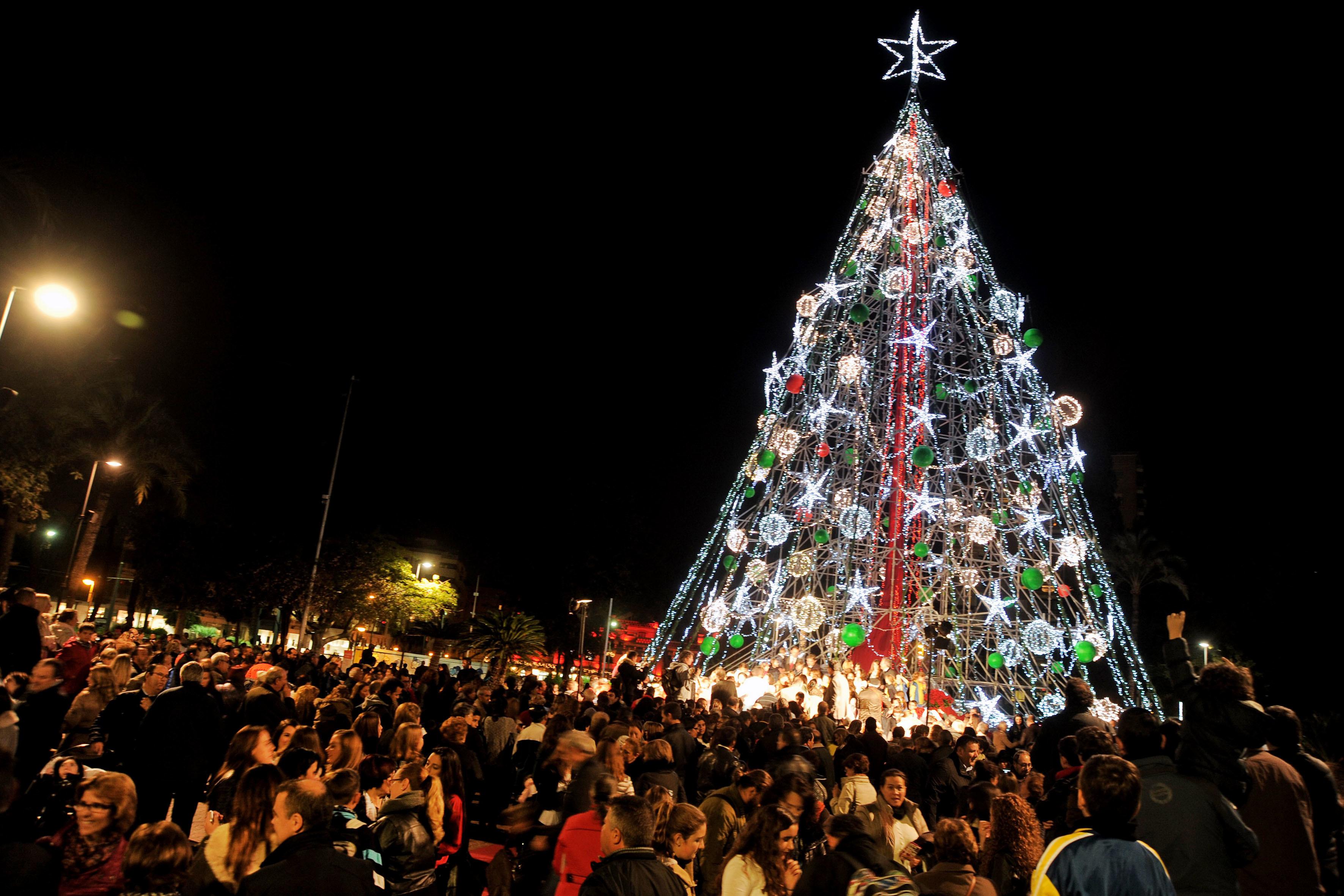 El gran rbol de Navidad ya preside Murcia